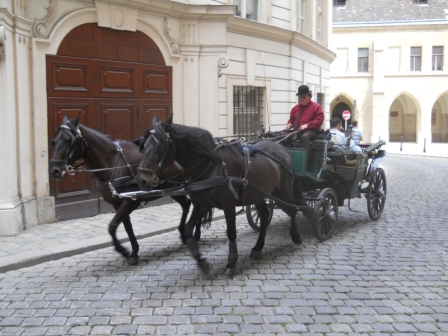 Carozza per giro turistico - Carriage tour